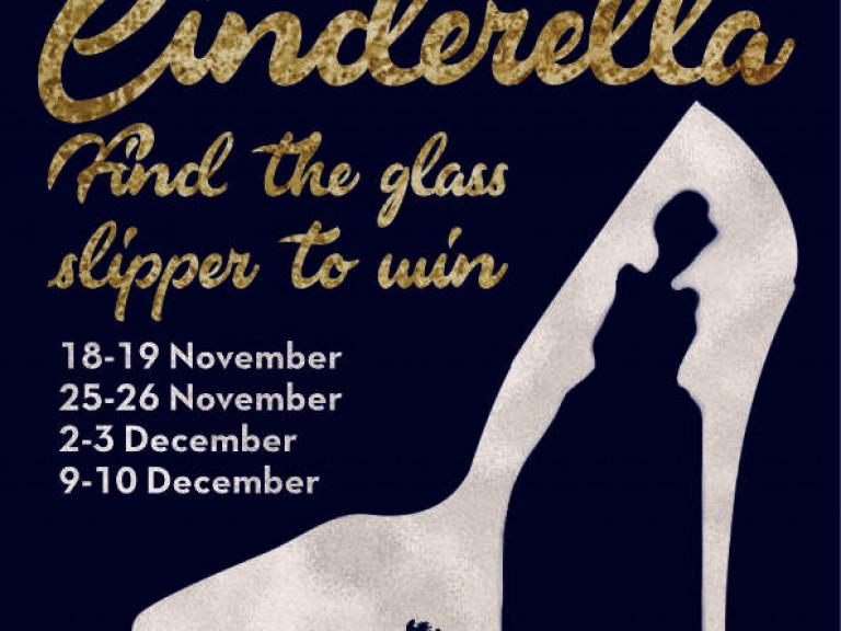 cinderella-glass-slipper-hunt-barrow-bid