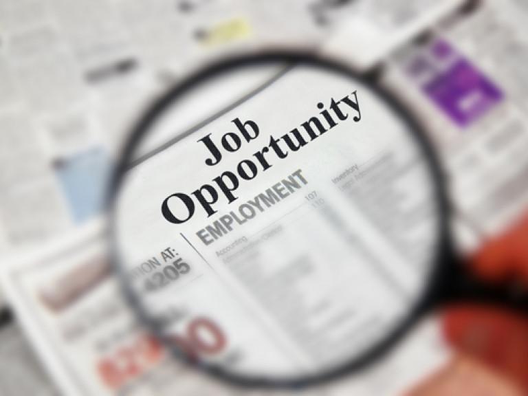 job opportunity barrow bid marketing and communications officer